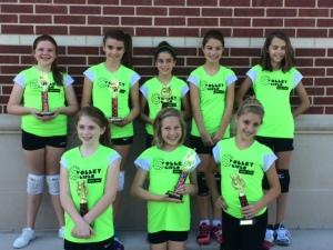 Emmarie Volleyball Fall 14