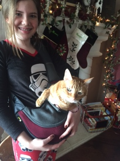 EmBug and the Cat Sling